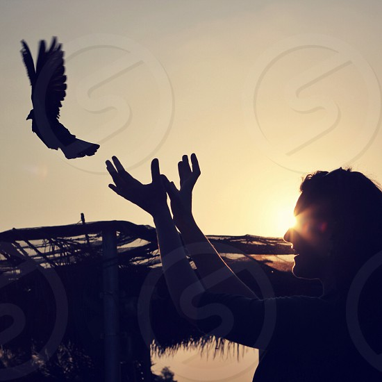 woman looking on the flying bird photo