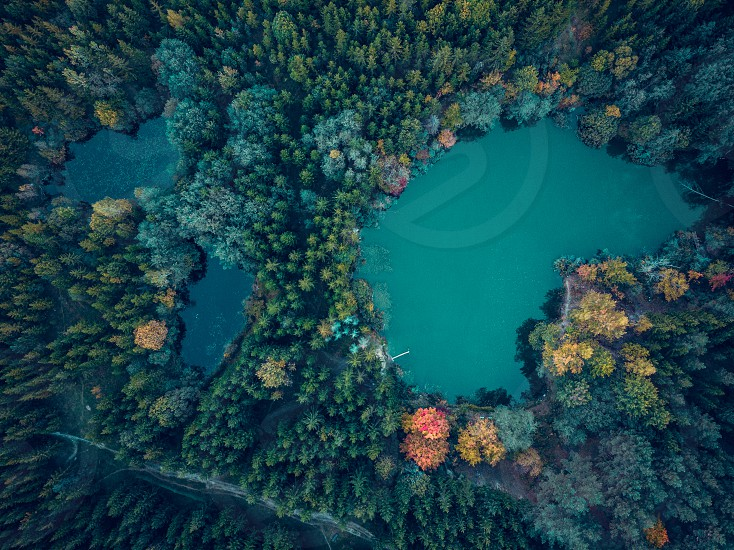 Birds eye perspective to three lakes in the forest. Drone photography photo