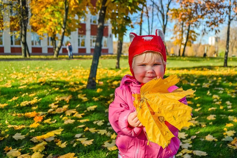 fall park photo
