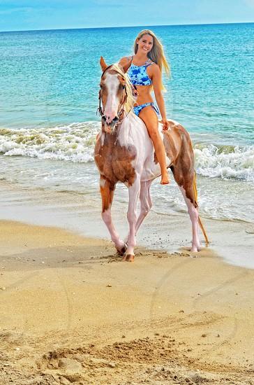 Horse on beach horse back riding beach ride Florida girl  Florida localhorses beach activities resort tropical vacation  photo