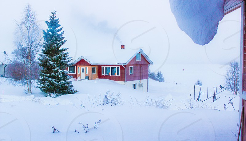View on a typical wooden cabin and the frozen lake of Akaslompolo Lapland (Finland). On the lake you see a person cross country skiing.  photo