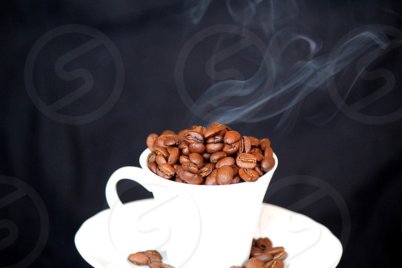 brown coffee beans in white ceramic cup photo