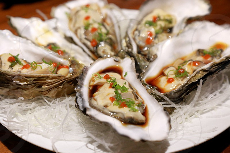 Raw Oysters at Japanese restaurant photo