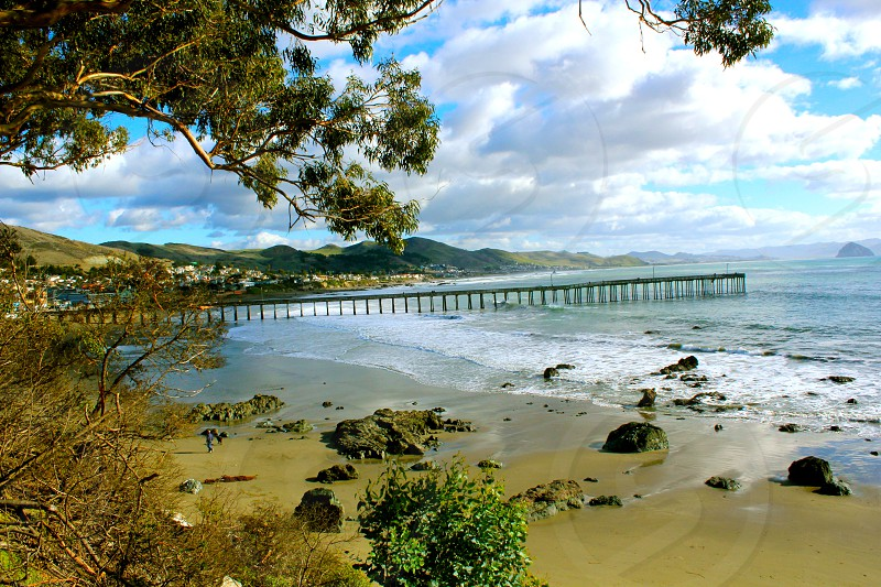 Cayucos Beach Ca.  photo