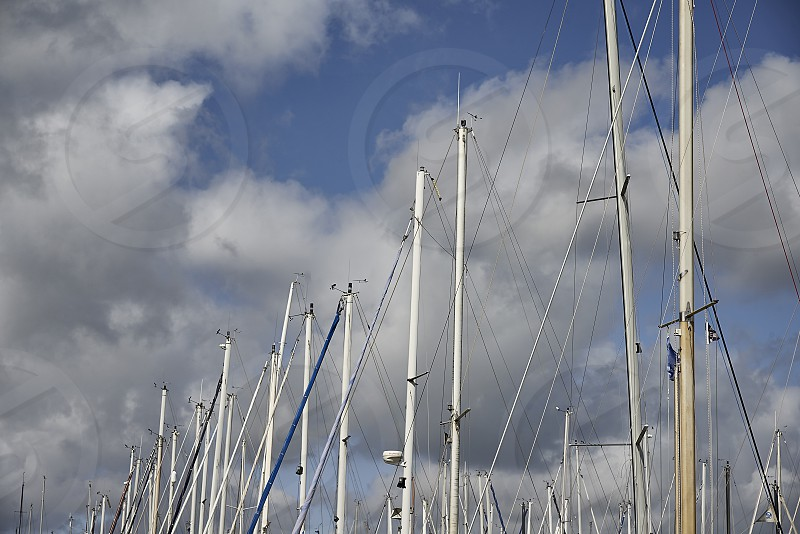 Masts of sailing boats in the port photo