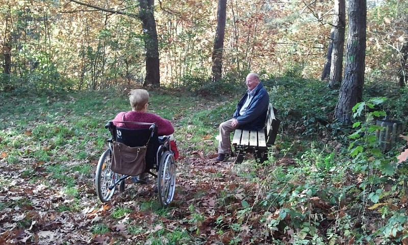 man sitting on bench and woman on wheelchair talking near trees photo