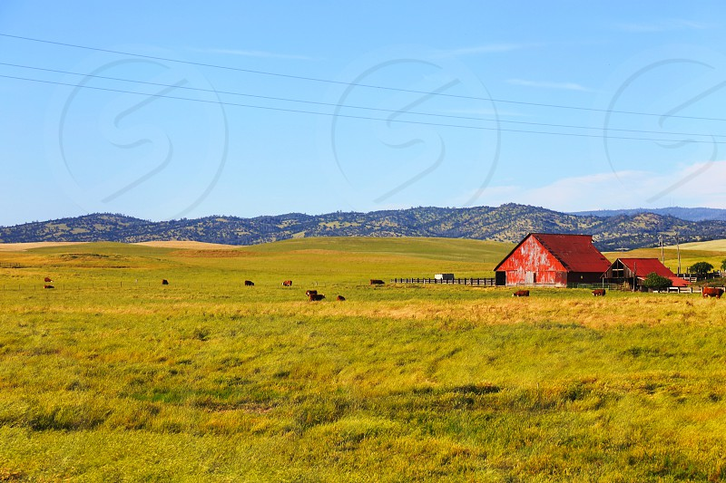 Green fields blue skies and a red barn for some very rustic living. photo