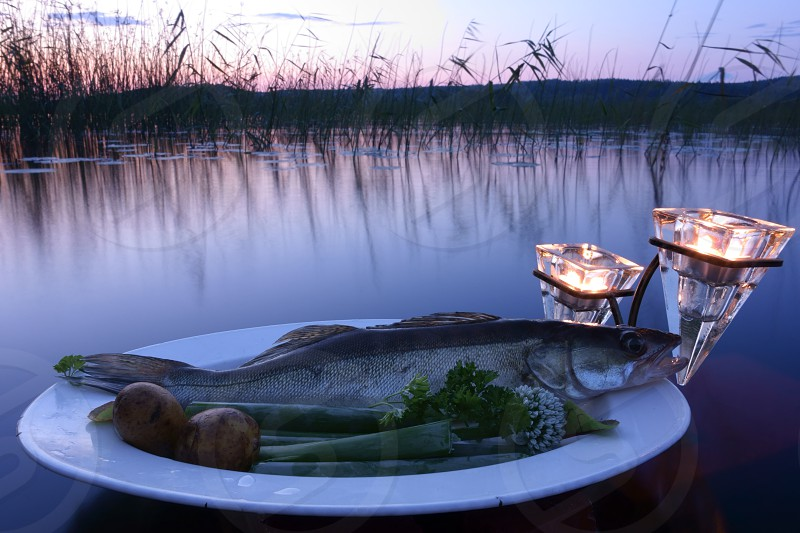 Fresh fish catch (pike perch) on plate served with fresh vegetables in outdoors setting on a lake with candles as a decoration at sunset time on summer evening at Nokia Finland. photo