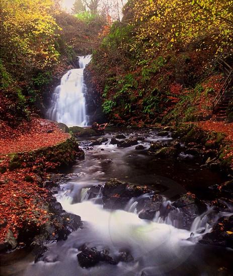 "Water ""fall""🍂 photo"