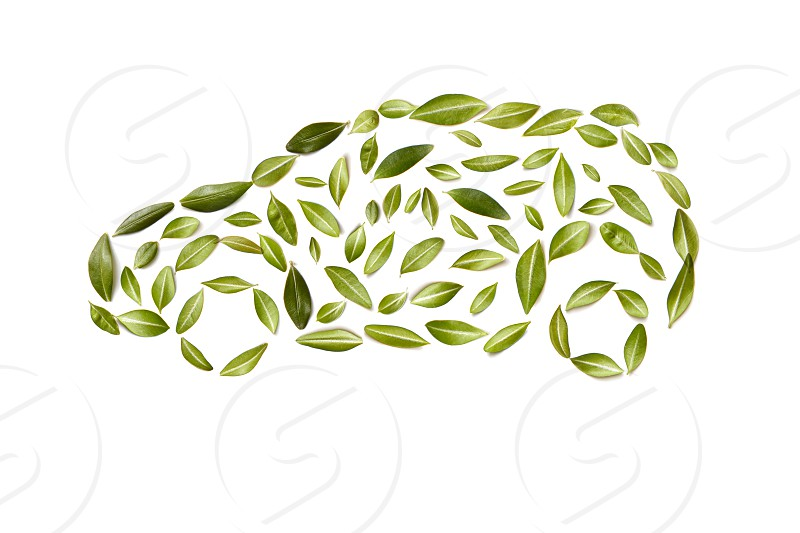 Green Car symbol from leaves isolated on white background photo
