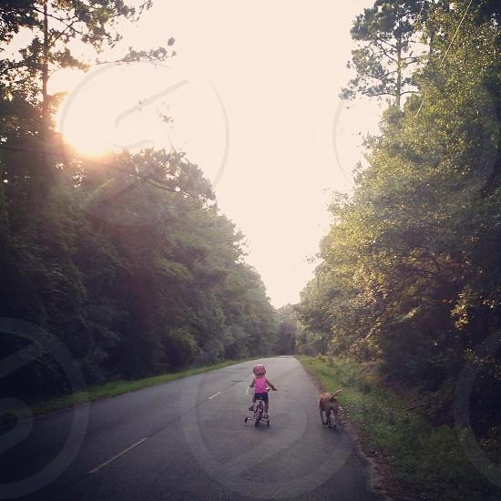 Bike ride girl dog training wheels photo