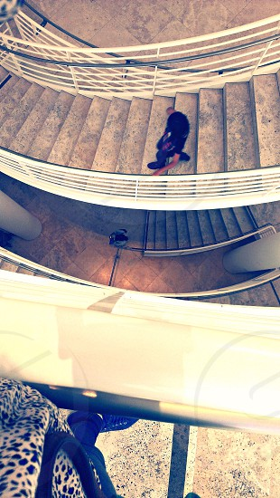 stairs levels walking winding staircase modern design photo