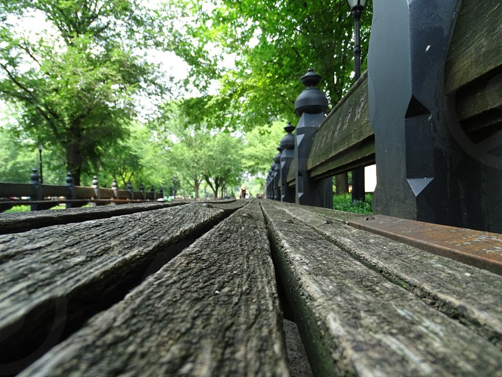 black wooden bridge surrounded by trees photo