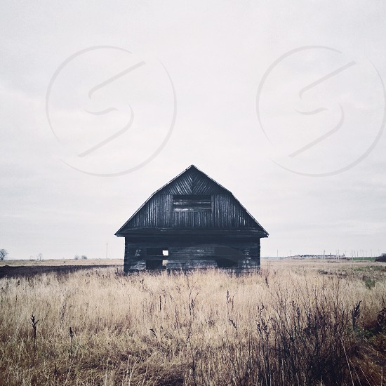 black wooden house on field picture photo