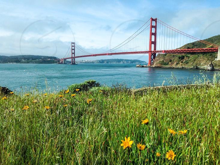 Golden Gate Bridge spring photo