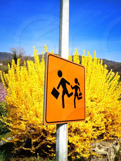 orange and black road sign by yellow leaf plant photo