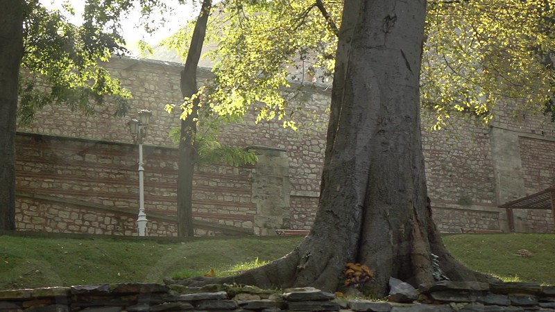 Panoramic view of ancient stone brick castle wall and park place with century-old trees Istanbul Turkey. Slow motion Full HD video 240fps 1080p. photo