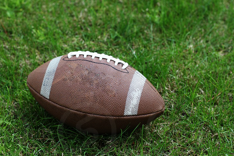 brown and gray football on green grass photo