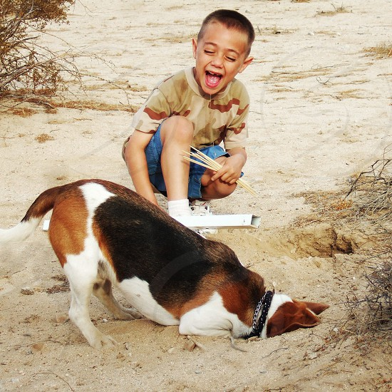 A little boy laughs at his dog who has is whole head in a hole he's digging in the desert sand. photo