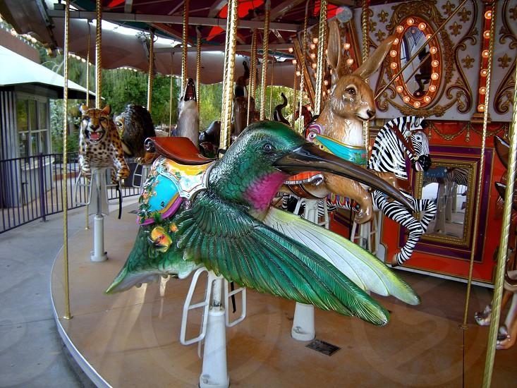 Strange carousel animals hummingbird photo