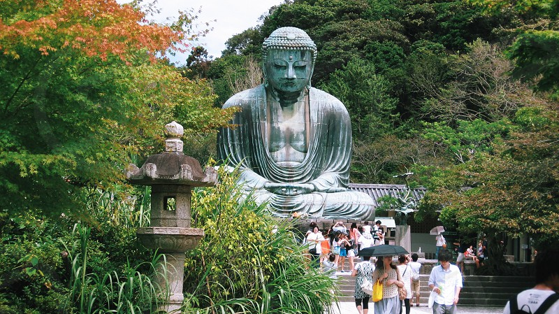 Kamakura daibutsu buddha vacation teavel japan tree people photo