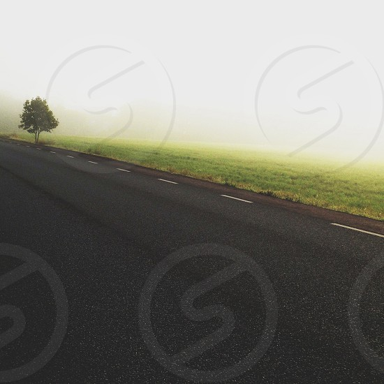 grey concrete road along green grass view photo