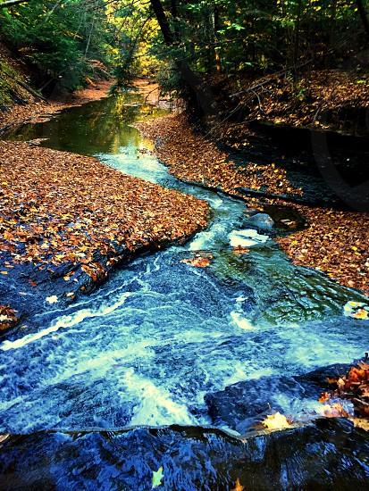 A mini waterfall in a creek in Ohio photo