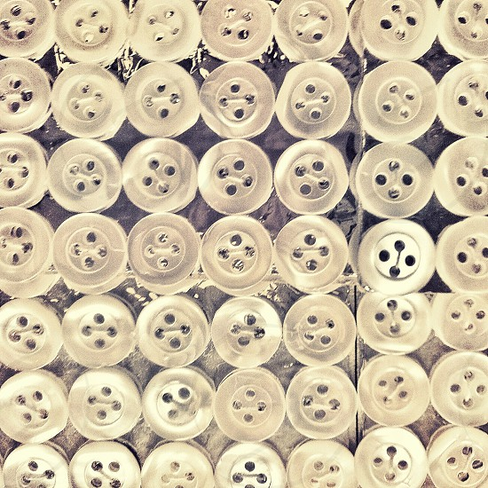 white buttons photo