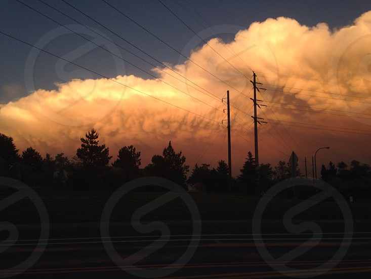 clouds on top of tree silhouettes photo during golden hour photo