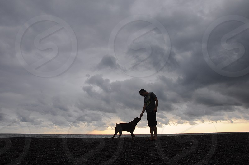 dog and a man on a beach photo
