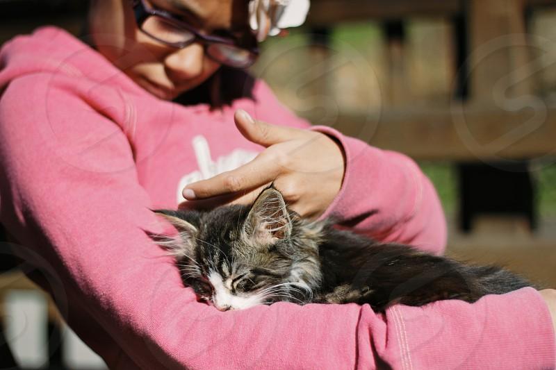 soft pink pet kitten fur girl gentle sleep calm photo