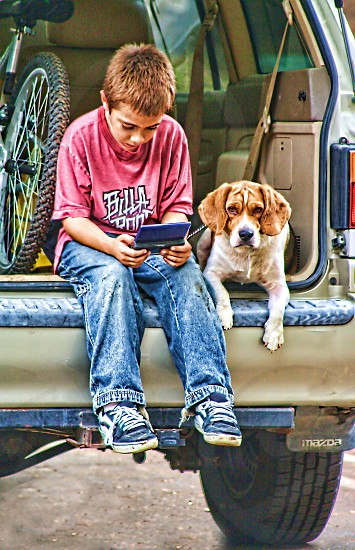 Dog sits near a boy playing a game both in the back of a parked van  photo