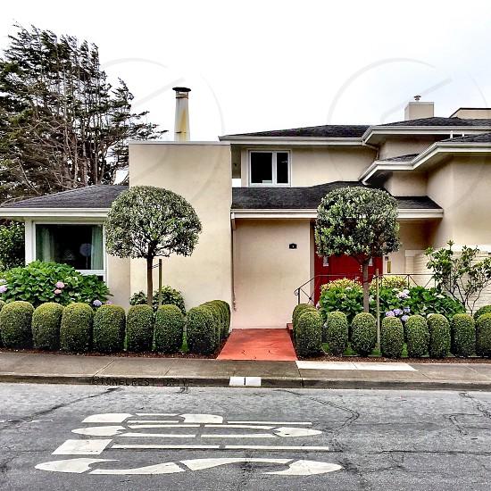 House hedges photo
