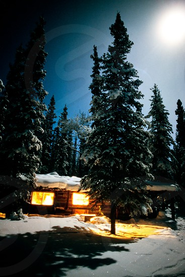 Yukon Alaska trapline log-cabin fully illuminated at full-moon night in snowy winter landscape photo