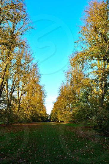 Bury St Edmunds park inside photo