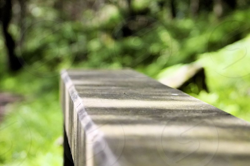 Wooden bench in the woods photo