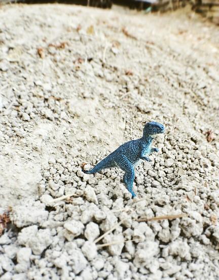 Roaming dinosaur.  photo