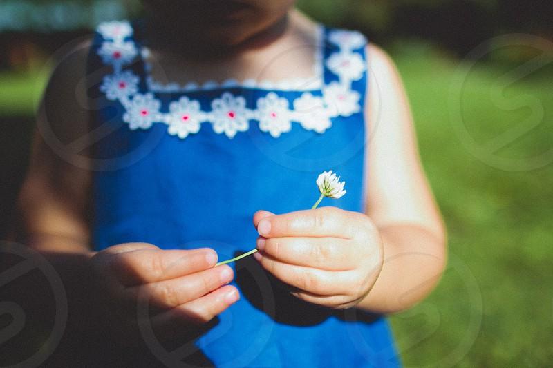 girl wearing blue dress holding flower photo