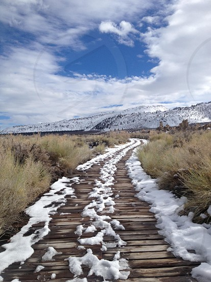 brown wooden pathway with melted snow on it with brown field on side during day photo