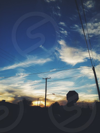 open sky clouds birds flying flight fly away travel urban city get away blue sunset photo