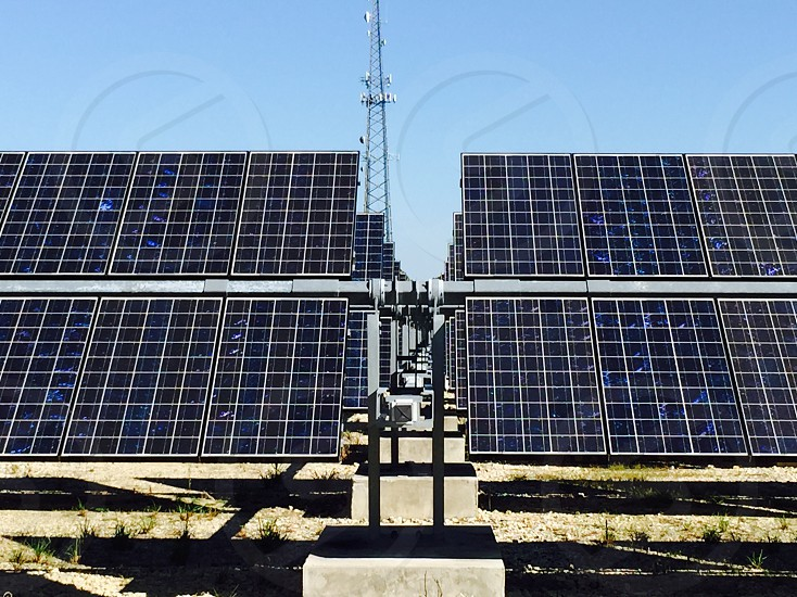 A solar array in Florida for sustainable energy. photo