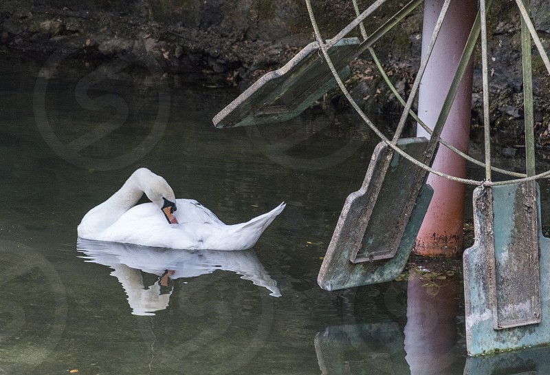 Water World photo