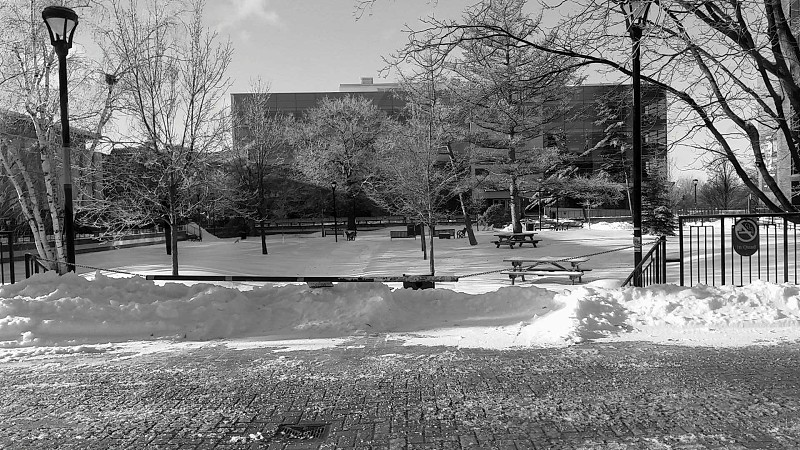 "Carleton university's ""quad""  OttawaON January 2015 photo"