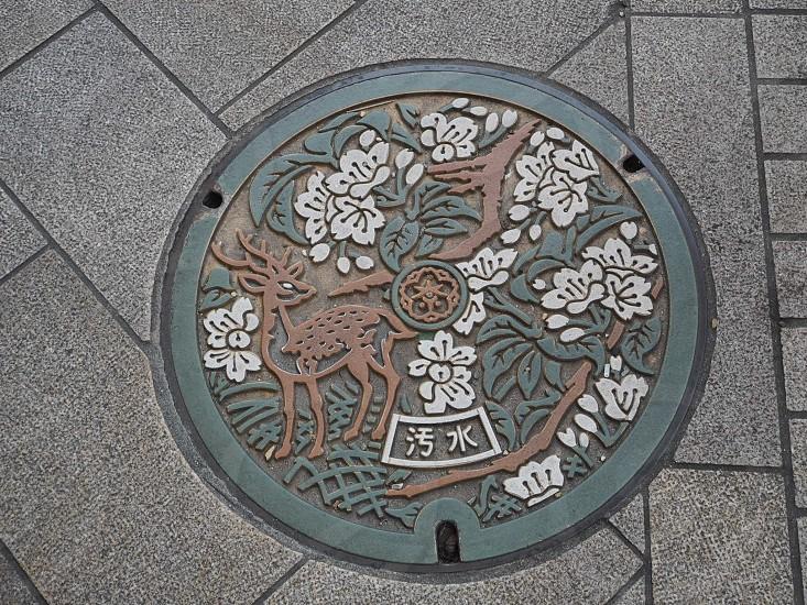 奈良 マンホール photo