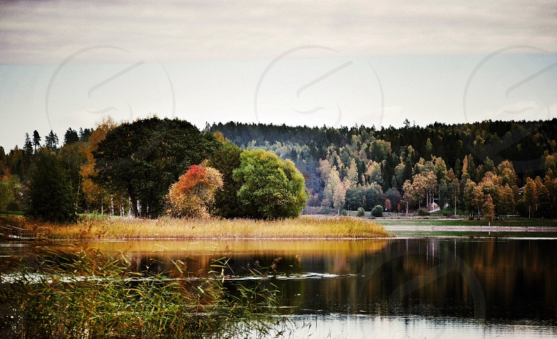 Lake water fall autumn trees colours Sweden photo