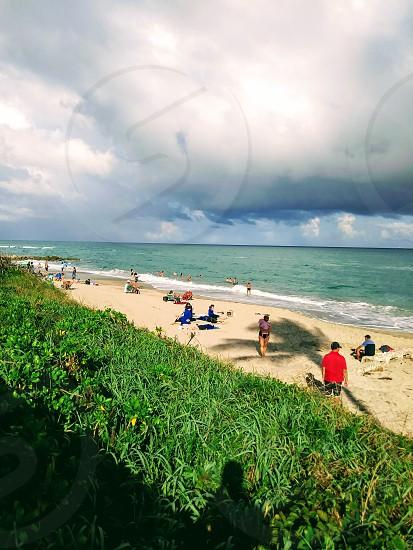 at the beach in palm beach photo