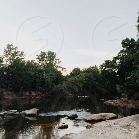 rocks and river between forest photo photo