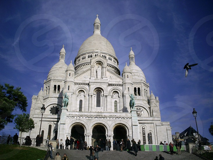 Sacre Coeur Paris Church Bird. photo