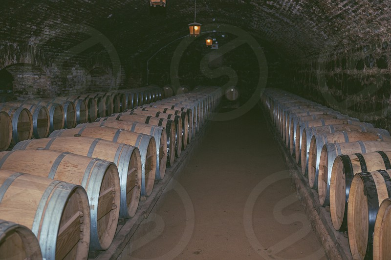 Wine barrels in a old cellar at winery. Wooden barrels of wine in vineyard photo
