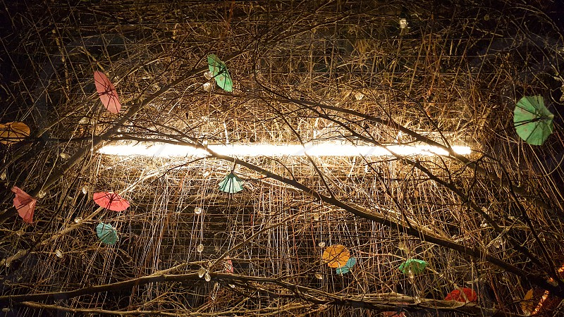 Fluorescent light surrounded by tree branches and tiny umbrellas photo